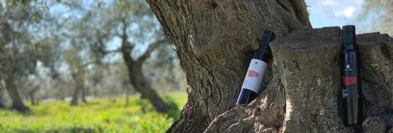 シチリア直輸入オリーブオイルのお店Oliva Sicula/オリーバシクラ